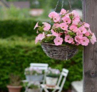 Bloemetjes fleuren wooncomplexen op